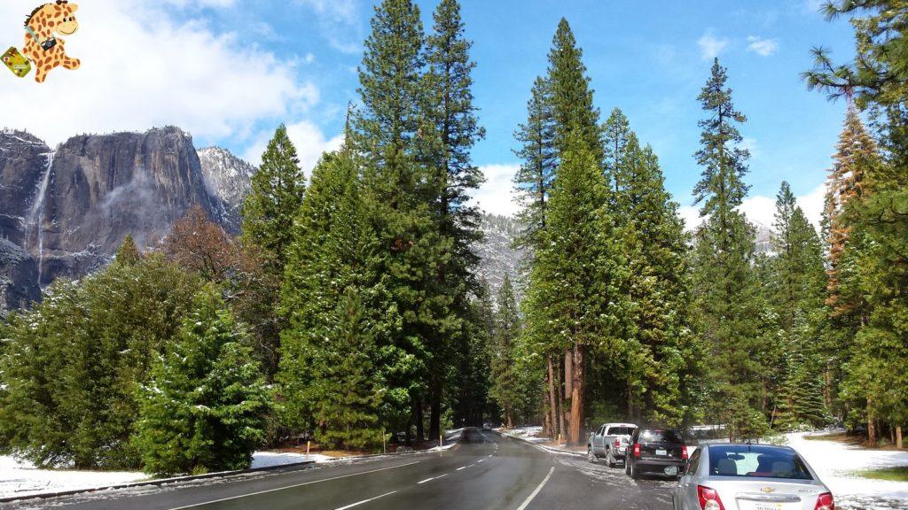 yosemite285329yosemitedeambulandoconartabria 1024x576 - Un día en Yosemite