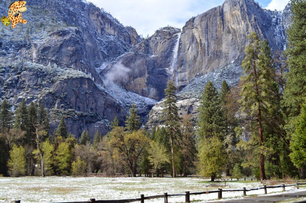 yosemite286129yosemitedeambulandoconartabria 1024x681 - Un día en Yosemite