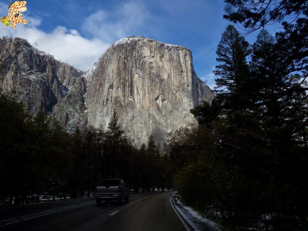 yosemite28929yosemitedeambulandoconartabria 1024x768 - Un día en Yosemite
