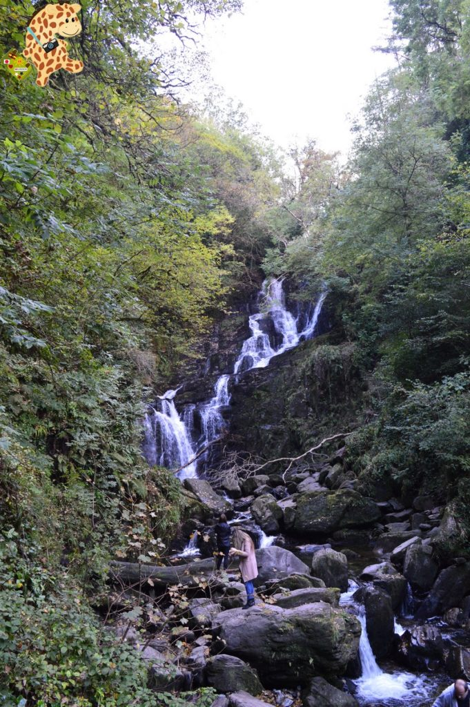 Irlanda281329 681x1024 - Irlanda en 10 días. Itinerario y presupuesto