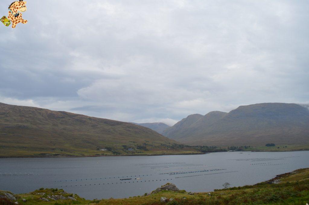 DSC 0090 1024x681 - Irlanda en 10 días: región de Connemara y Galway