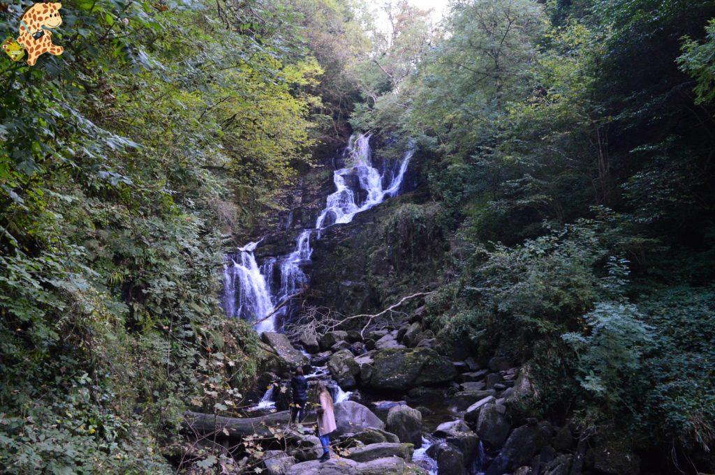 Irlanda2810929 1024x681 - Irlanda en 10 días: Alcantilados de Moher, Adare y Parque Nacional de Killarney
