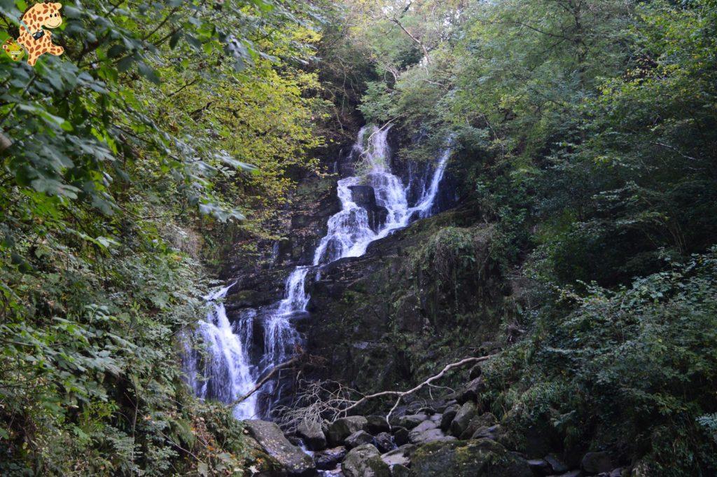 Irlanda2811229 1024x681 - Irlanda en 10 días: Alcantilados de Moher, Adare y Parque Nacional de Killarney