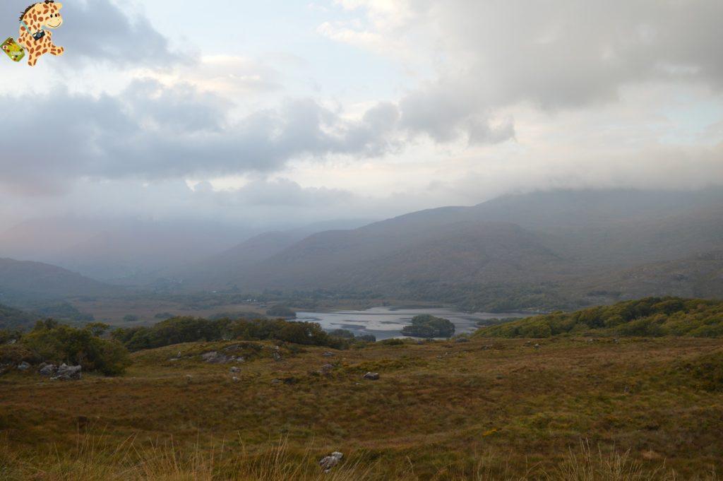 Irlanda2814029 1024x681 - Irlanda en 10 días: Alcantilados de Moher, Adare y Parque Nacional de Killarney