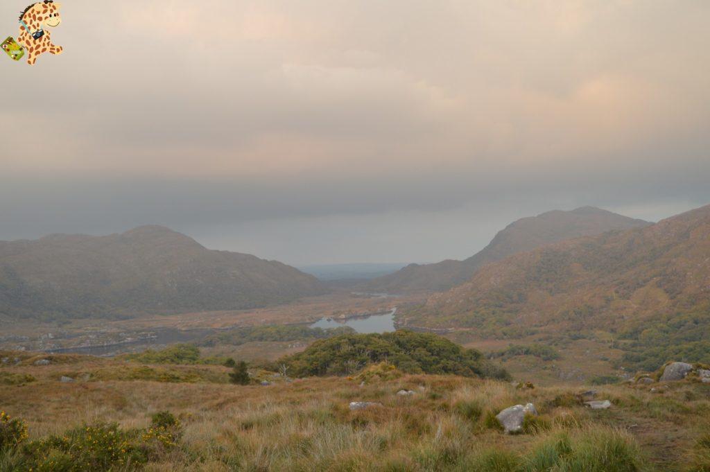 Irlanda2814129 1024x681 - Irlanda en 10 días: Alcantilados de Moher, Adare y Parque Nacional de Killarney