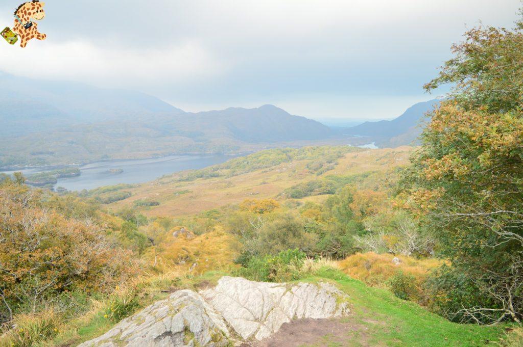Irlanda2815629 1024x681 - Irlanda en 10 días: Alcantilados de Moher, Adare y Parque Nacional de Killarney