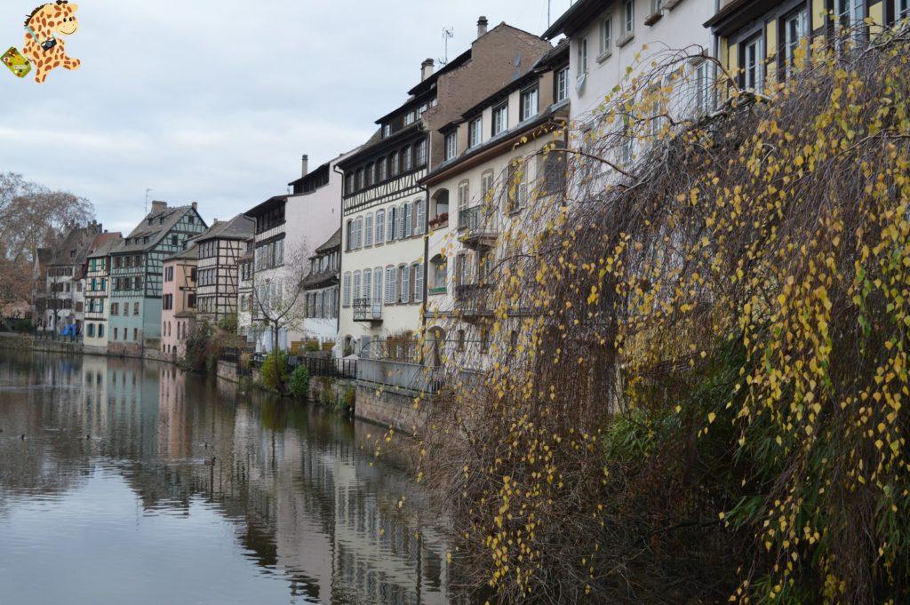 alsacia2811229 1024x681 - Qué ver en Alsacia: Estrasburgo
