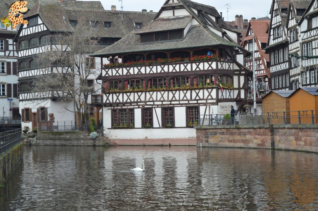 alsacia2811529 1024x681 - Qué ver en Alsacia: Estrasburgo