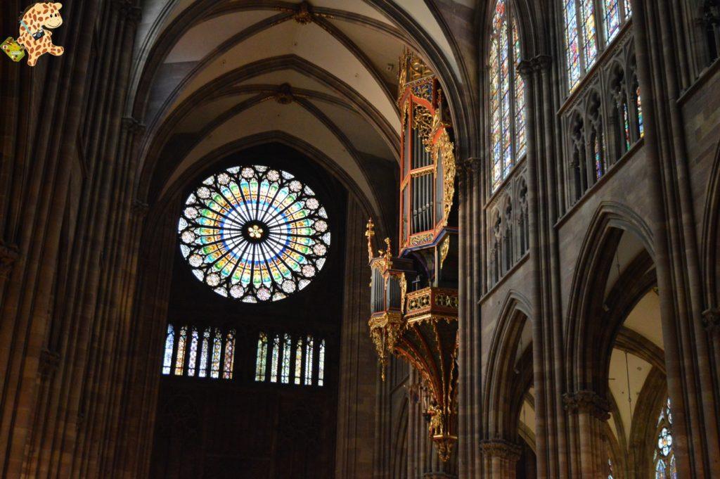 alsacia2811729 1024x681 - Qué ver en Alsacia: Estrasburgo
