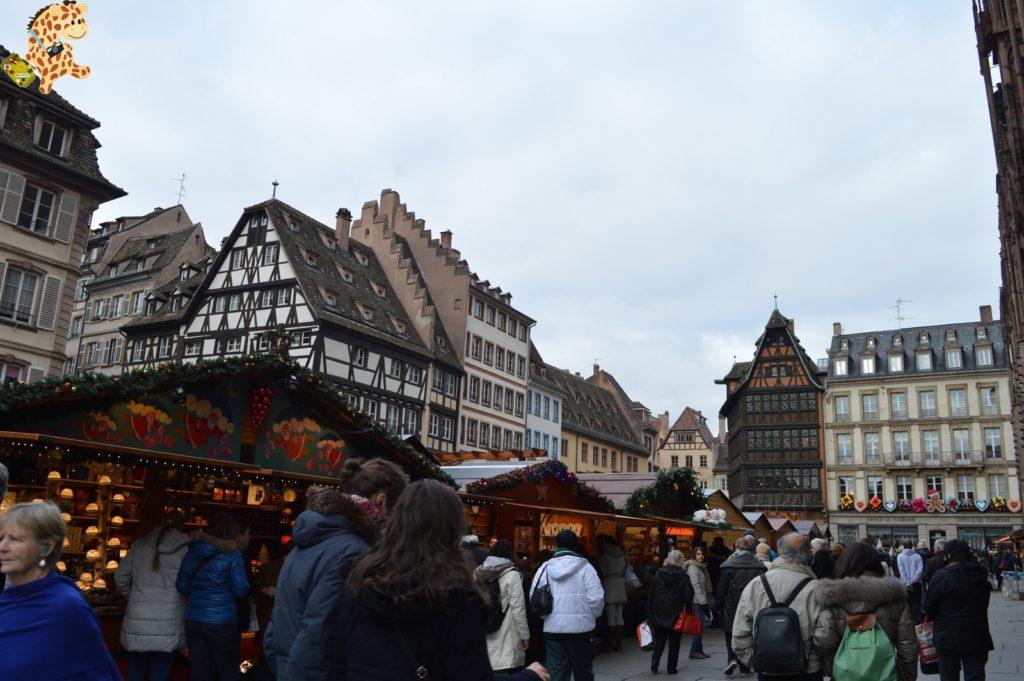 alsacia2811929 1024x681 - Qué ver en Alsacia: Estrasburgo
