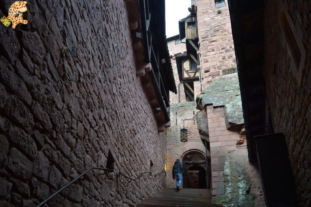 alsacia287129 1024x681 - Qué ver en Alsacia: Castillo de Haut Koenigsbourg, Barr y Obernai