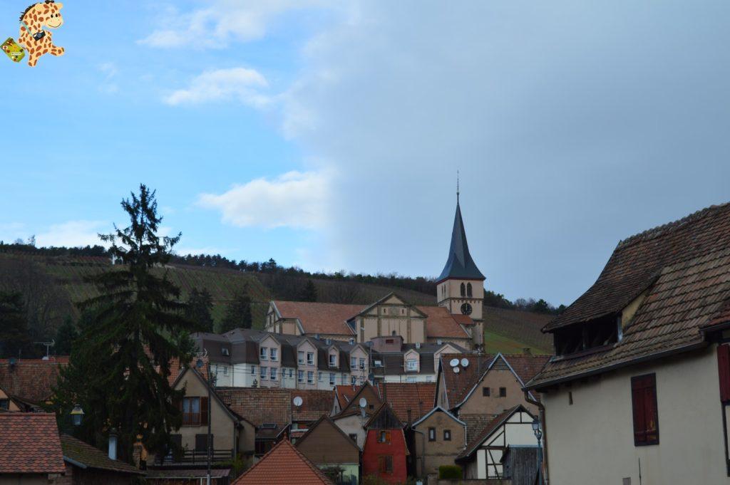 alsacia288529 1024x681 - Qué ver en Alsacia: Castillo de Haut Koenigsbourg, Barr y Obernai
