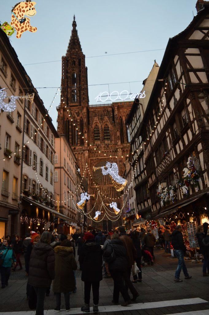alsacia289529 681x1024 - Qué ver en Alsacia: Estrasburgo