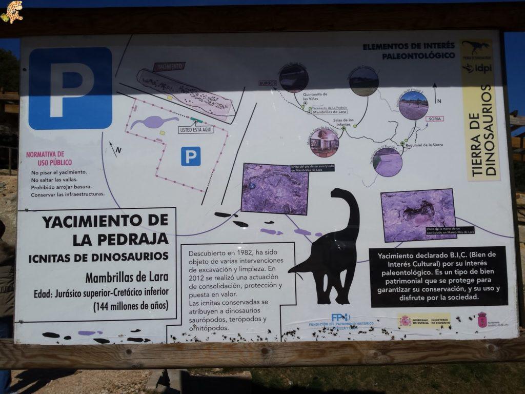 20160324 154445 1024x768 - Burgos con niños