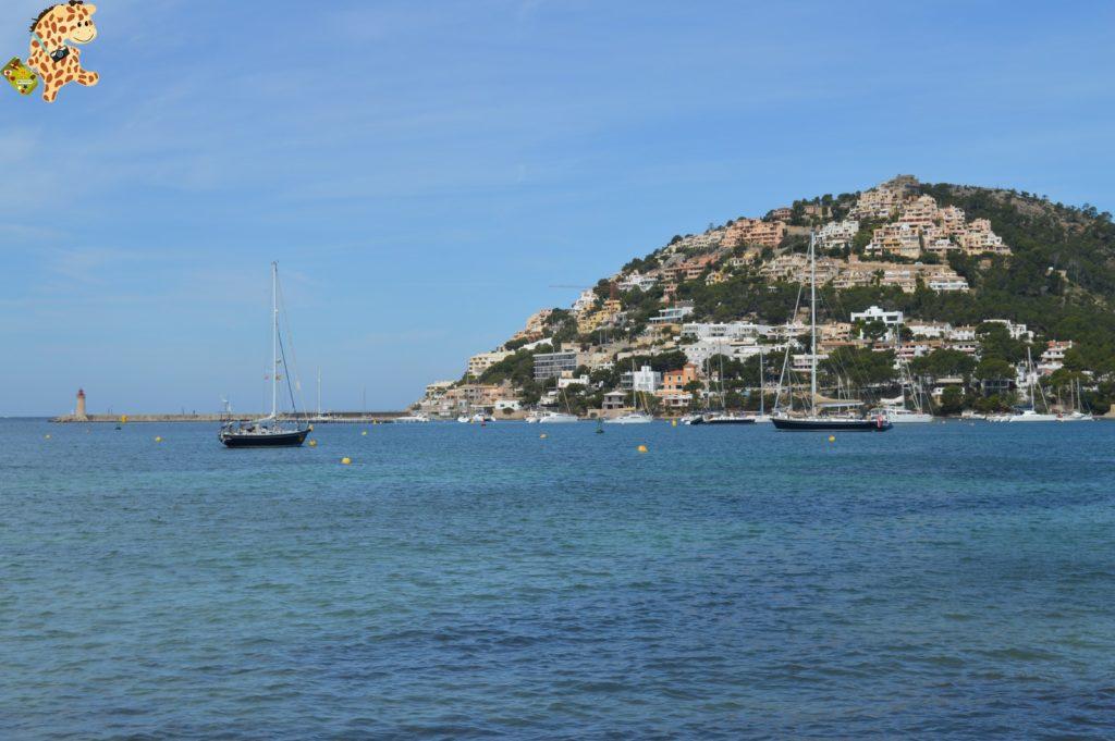 Mallorca2812529 1024x681 - Qué ver en Mallorca en 5 días?