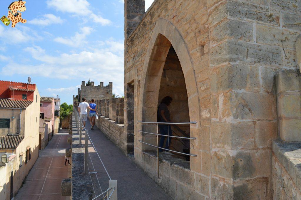 Mallorca2836729 1024x681 - Qué ver en Mallorca en 5 días?