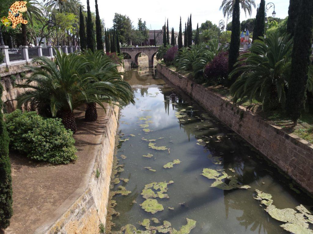 Mallorca286729 1024x768 - Qué ver en Mallorca en 5 días?