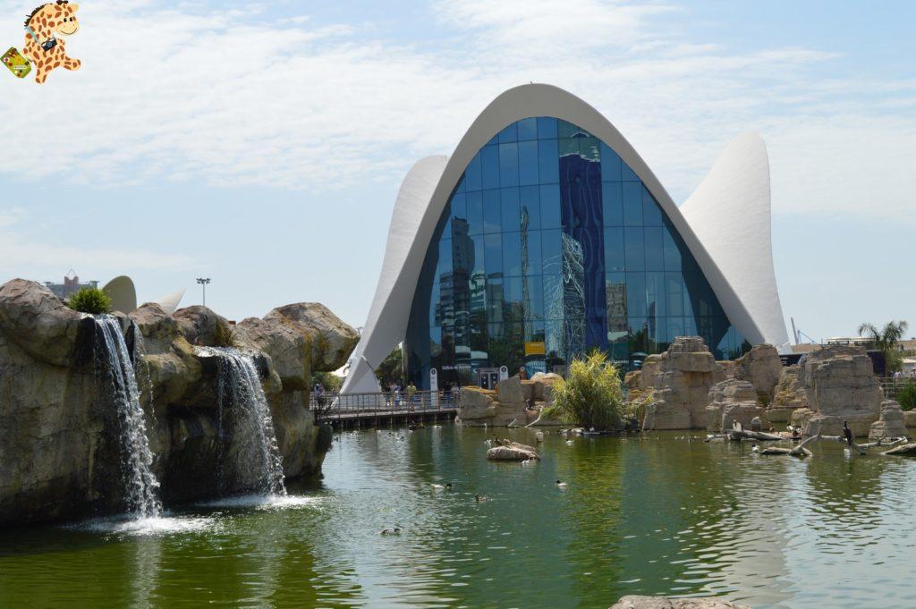 queverenvalencia valenciaconniC3B1os282529 1024x681 - Qué ver en Valencia - Valencia con niños