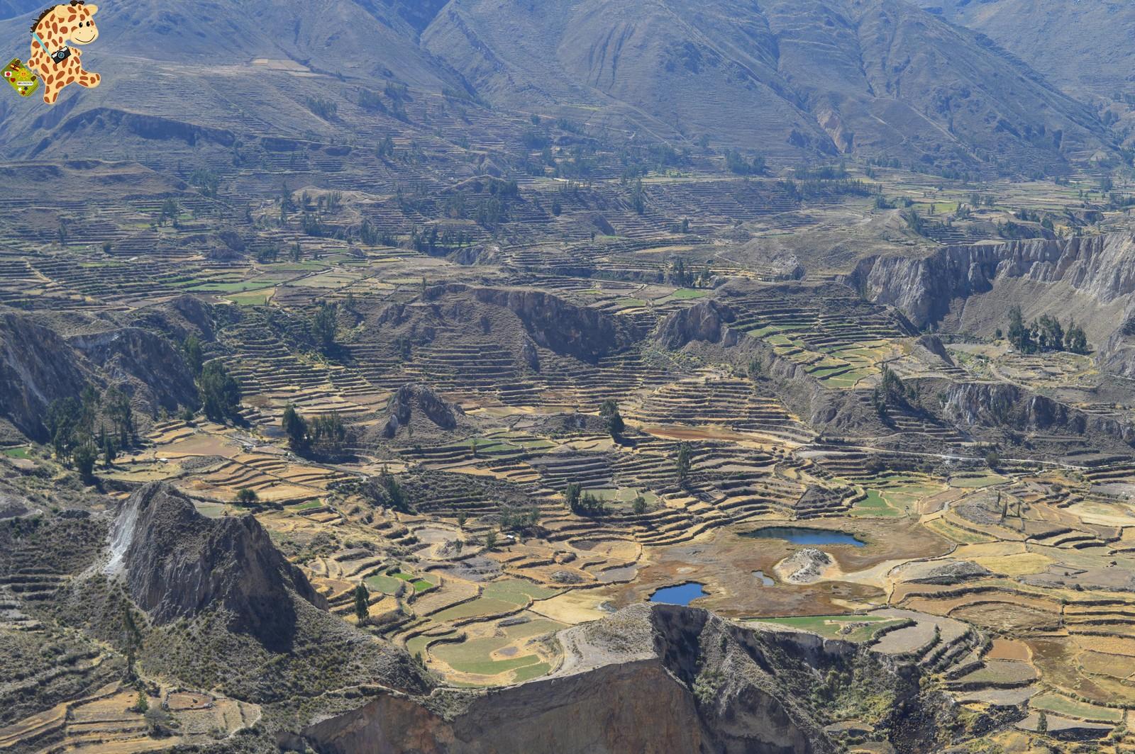 Qué ver en el Valle del Colca?