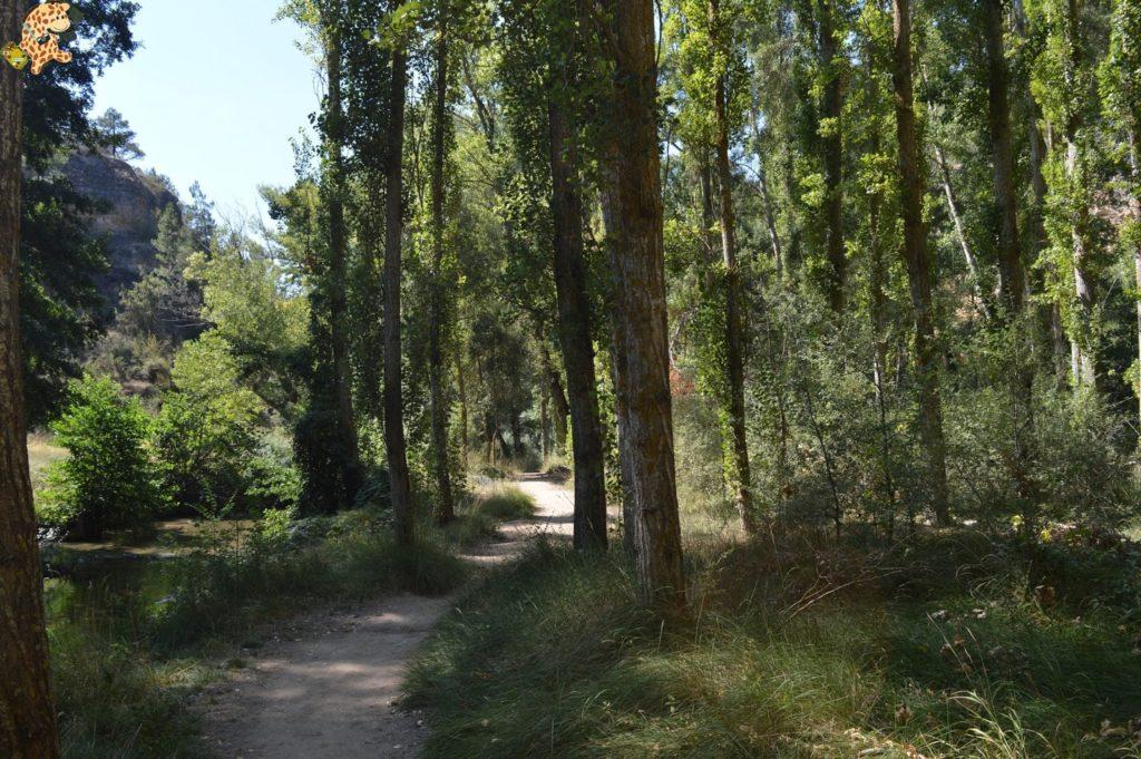 queverenhocesdelrioduraton2Csepulvedaypedraza285229 1024x681 - Hoces del Río Duratón y alrededores (Sepúlveda y Pedraza)