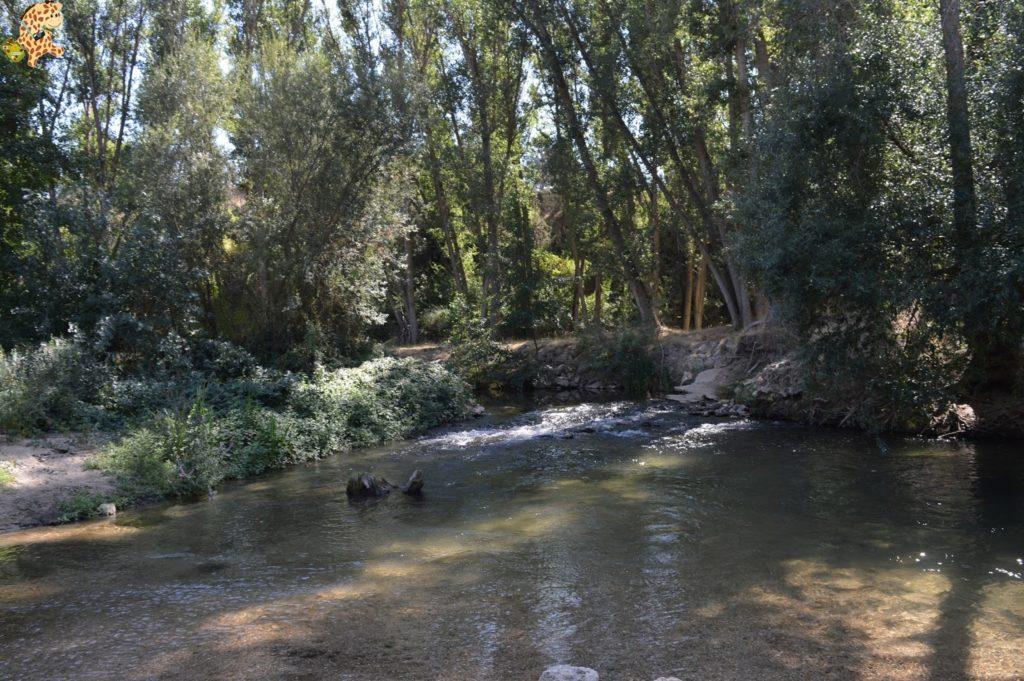 queverenhocesdelrioduraton2Csepulvedaypedraza285429 1024x681 - Hoces del Río Duratón y alrededores (Sepúlveda y Pedraza)