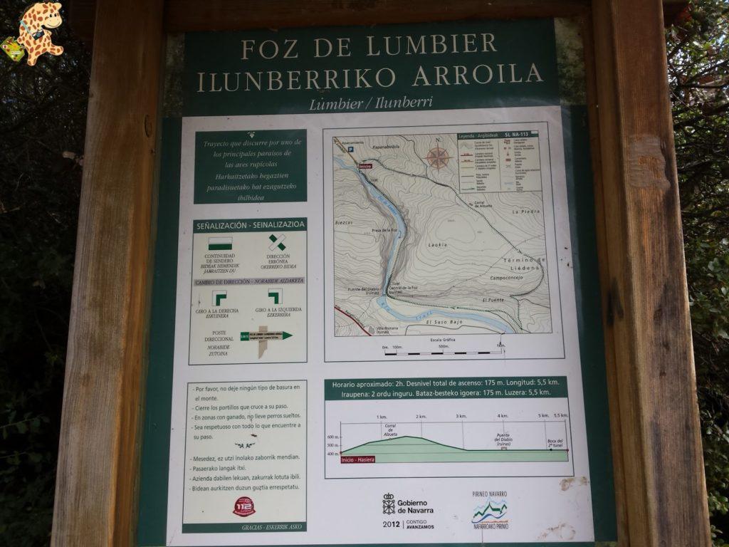 focesnavarrafozlumbierfozarbayun281429 1024x768 - Foces de Navarra: Foz de Lumbier y Foz de Arbayún