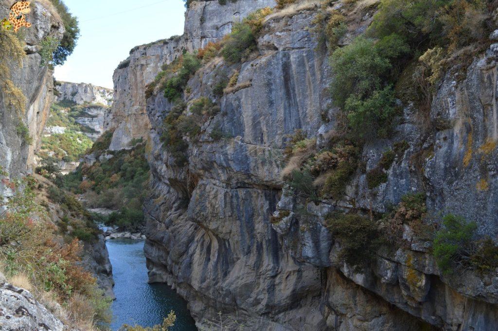 focesnavarrafozlumbierfozarbayun28229 1024x681 - Foces de Navarra: Foz de Lumbier y Foz de Arbayún