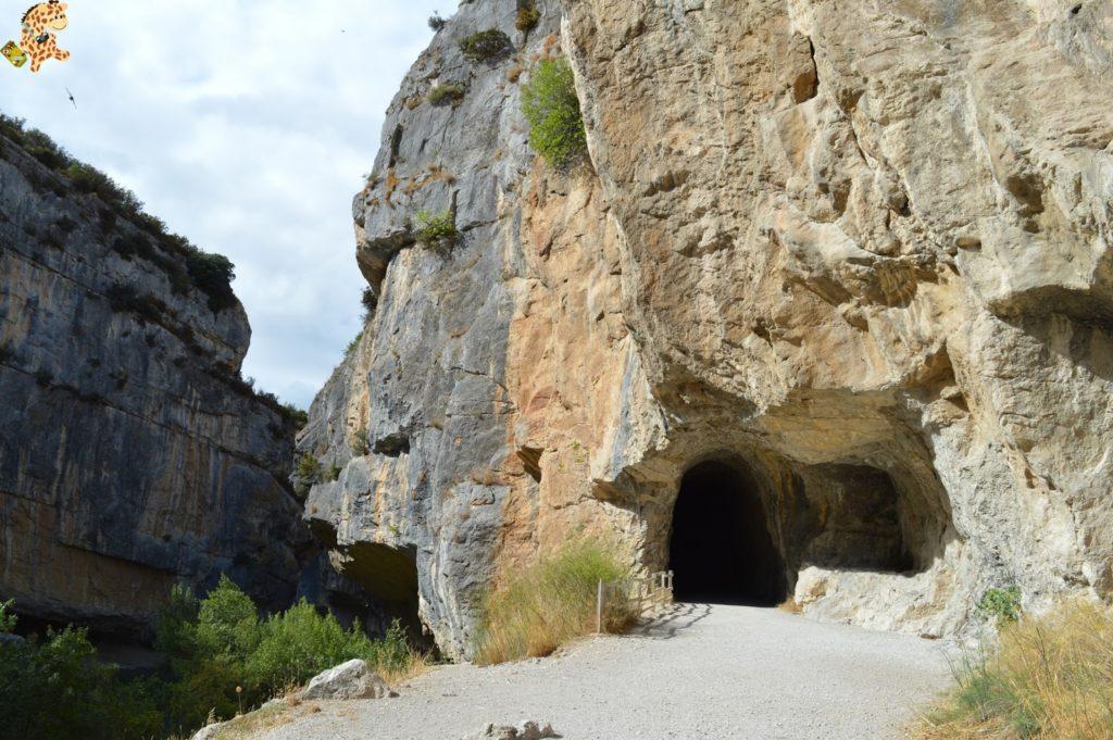 focesnavarrafozlumbierfozarbayun28429 1024x681 - Foces de Navarra: Foz de Lumbier y Foz de Arbayún