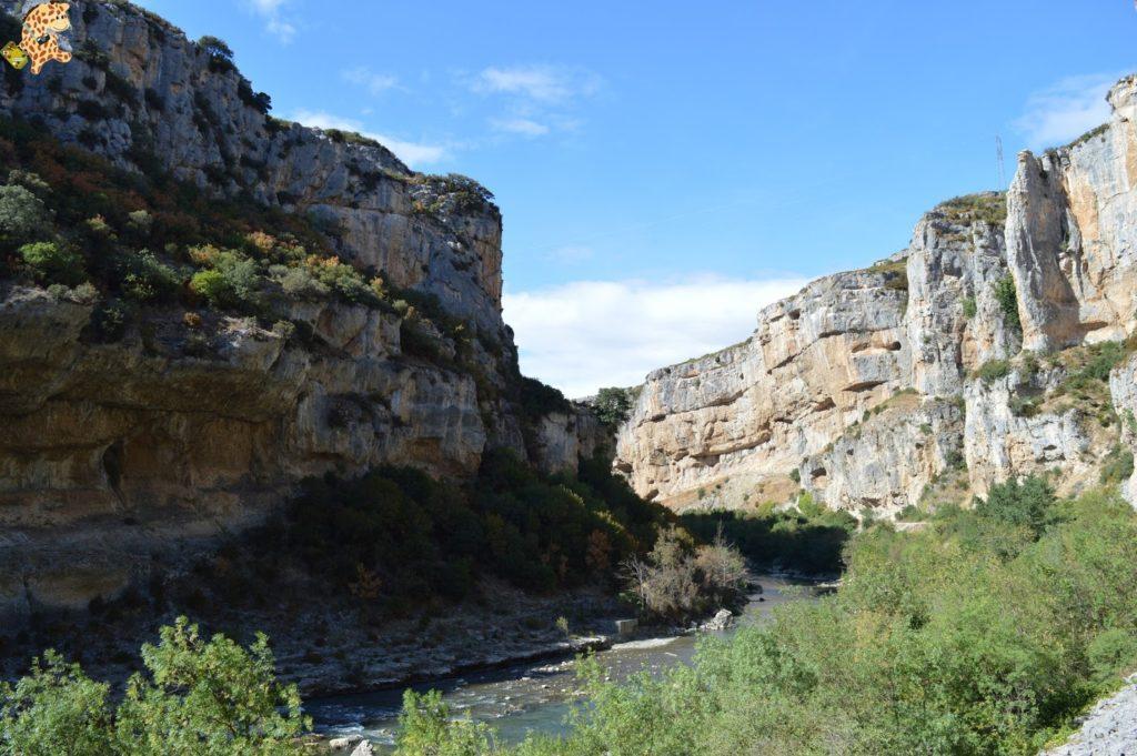 focesnavarrafozlumbierfozarbayun28829 1024x681 - Foces de Navarra: Foz de Lumbier y Foz de Arbayún
