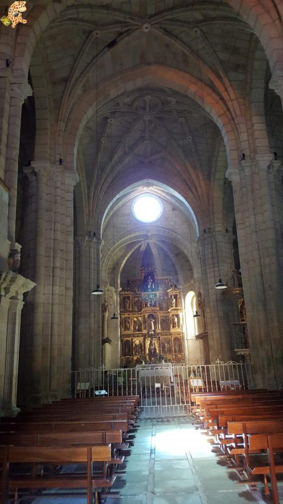 ribeirasacra28229 576x1024 - Ruta de miradores de la Ribeira Sacra
