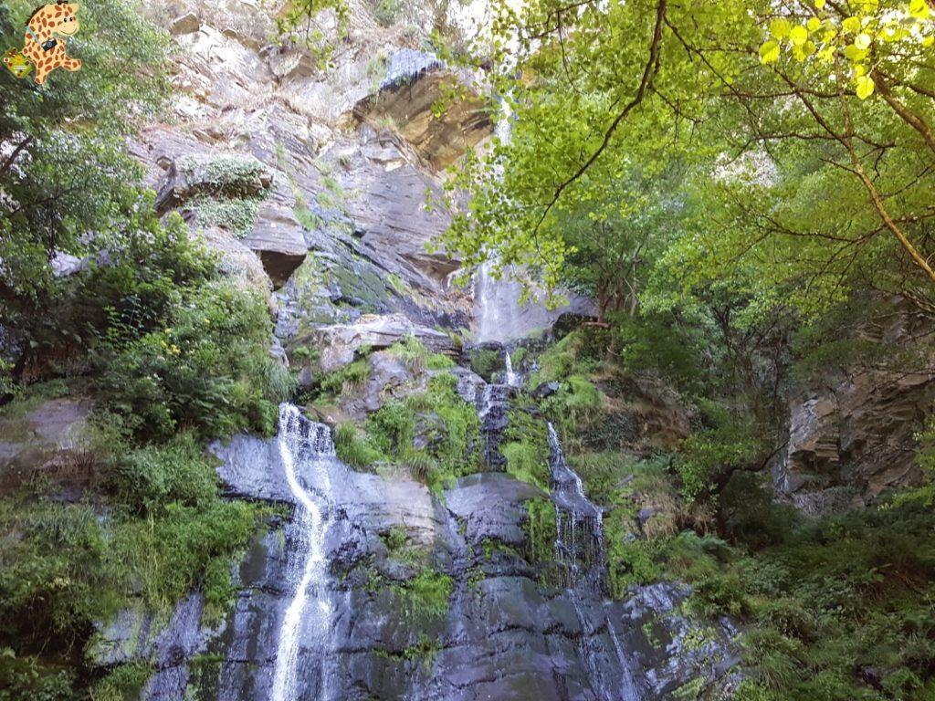 seimeiradevilagocende281029 1024x768 - Seimeira de Vilagocende en A Fonsagrada (Lugo)