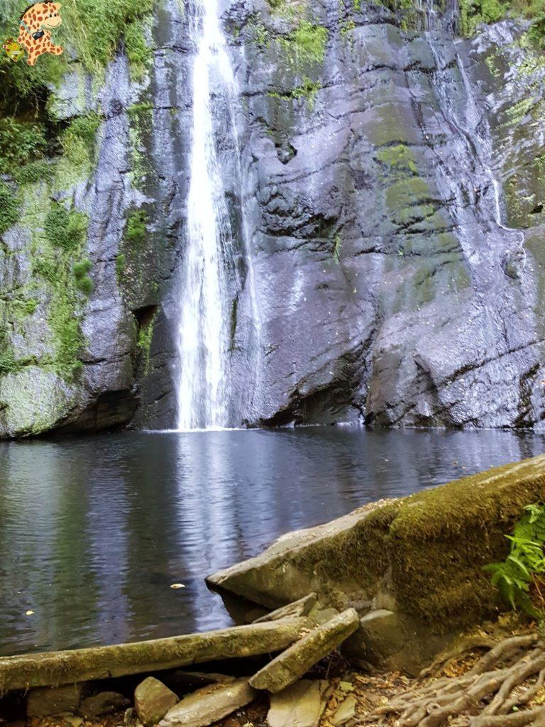 seimeiradevilagocende281229 768x1024 - Seimeira de Vilagocende en A Fonsagrada (Lugo)