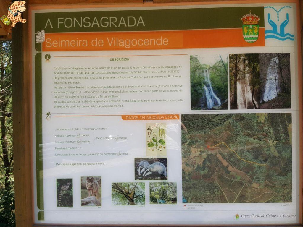 seimeiradevilagocende28129 1024x768 - Seimeira de Vilagocende en A Fonsagrada (Lugo)