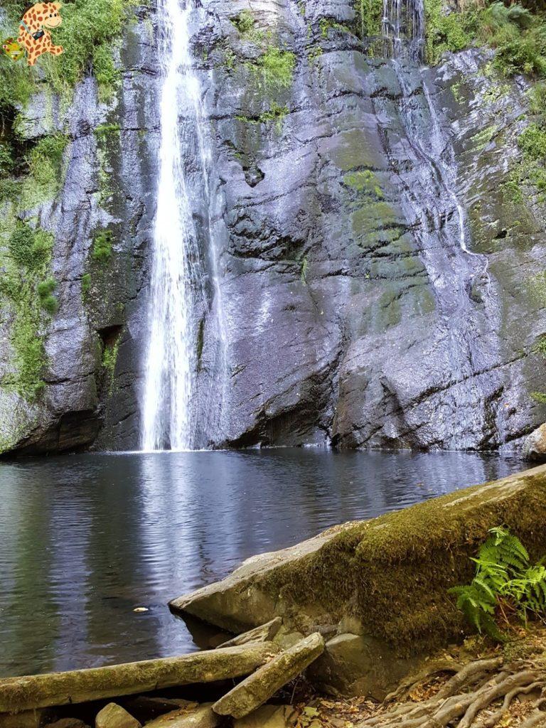 seimeiradevilagocende281329 768x1024 - Seimeira de Vilagocende en A Fonsagrada (Lugo)