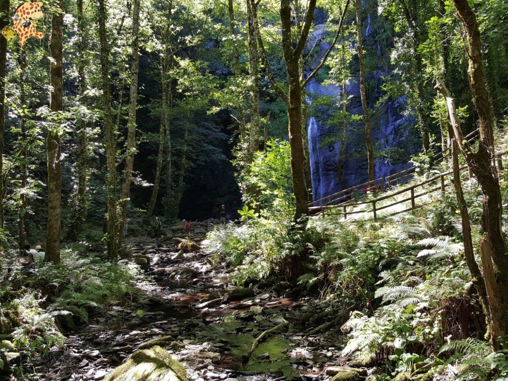 seimeiradevilagocende281829 1024x768 - Seimeira de Vilagocende en A Fonsagrada (Lugo)