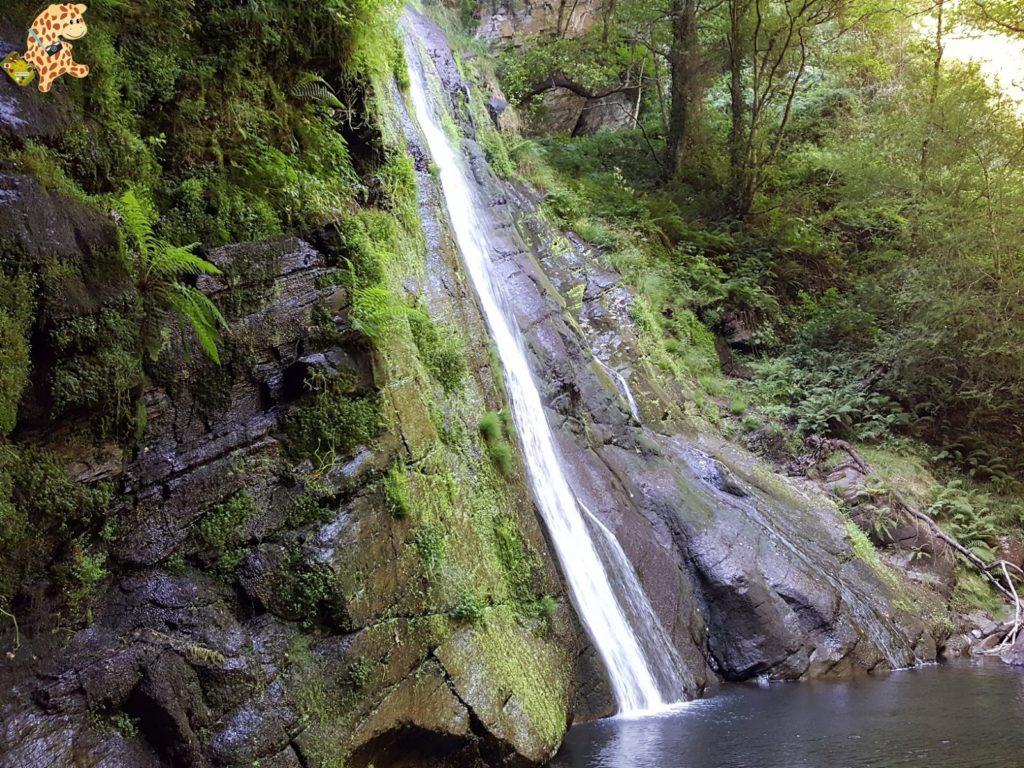seimeiradevilagocende282029 1024x768 - Seimeira de Vilagocende en A Fonsagrada (Lugo)