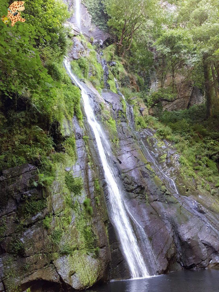 seimeiradevilagocende282129 768x1024 - Seimeira de Vilagocende en A Fonsagrada (Lugo)