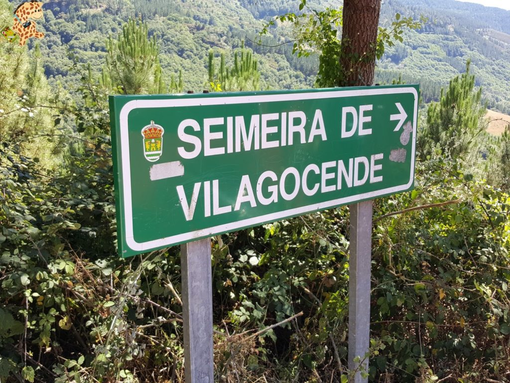 seimeiradevilagocende28229 1024x768 - Seimeira de Vilagocende en A Fonsagrada (Lugo)