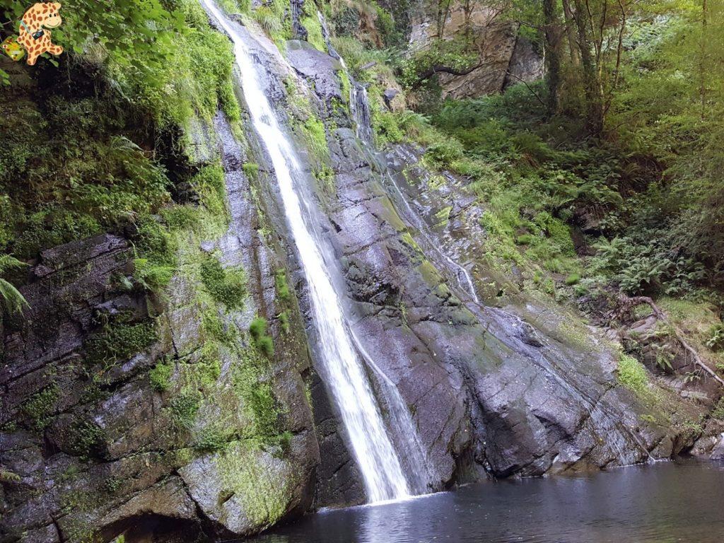seimeiradevilagocende282329 1024x768 - Seimeira de Vilagocende en A Fonsagrada (Lugo)