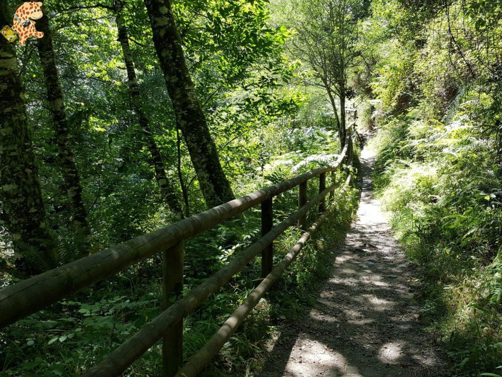 seimeiradevilagocende28329 1024x768 - Seimeira de Vilagocende en A Fonsagrada (Lugo)