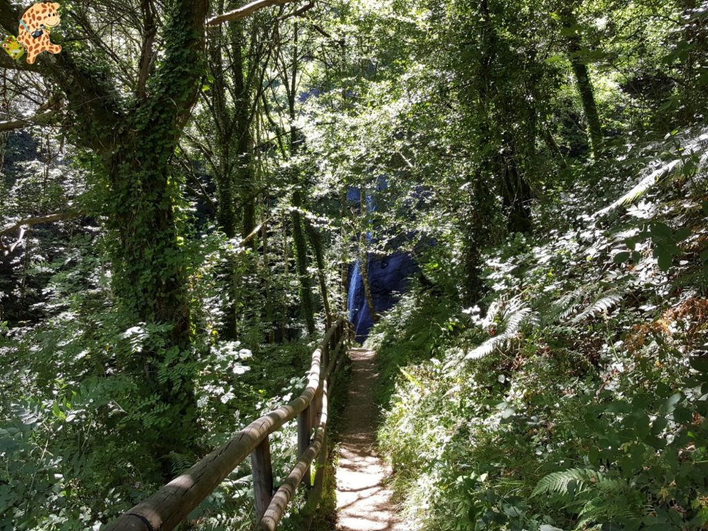 seimeiradevilagocende28429 1024x768 - Seimeira de Vilagocende en A Fonsagrada (Lugo)