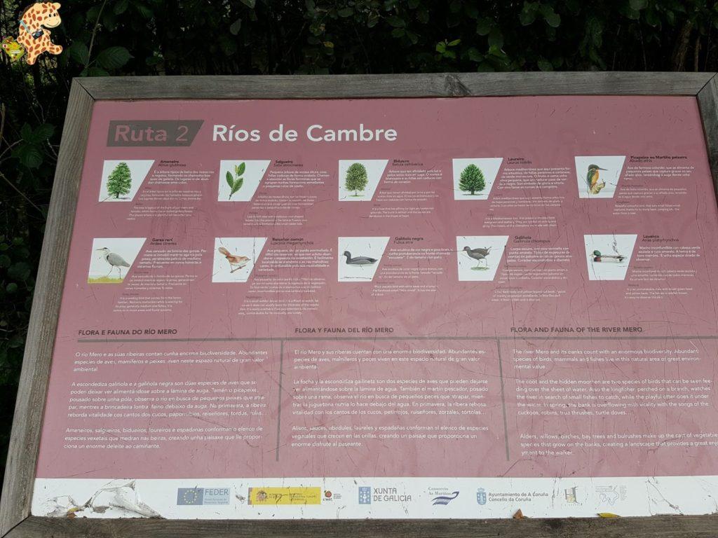 """rutadosriosdecambre28429 1024x768 - Ruta """"Ríos de Cambre"""""""