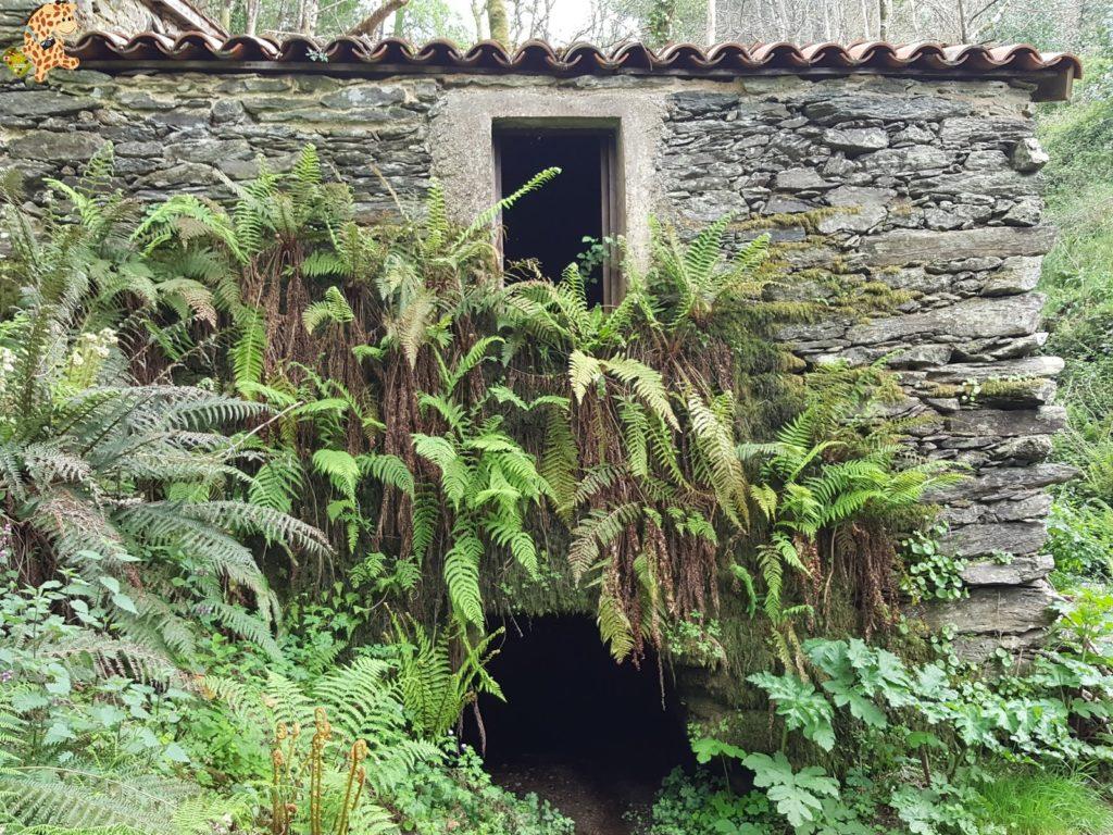 roteirocostadaegoacarral28529 1024x768 - Ruta de Costa da Égoa - Carral