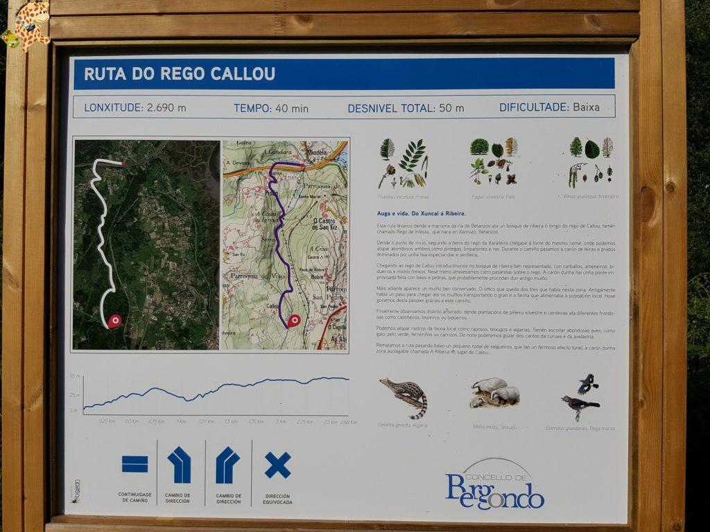 rutadoregocallou senderismoBergondo28129 1024x768 - Ruta do Rego Callou - senderismo en Bergondo (A Coruña)