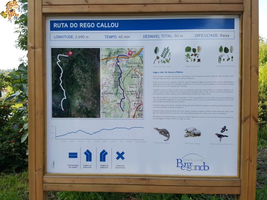 rutadoregocallou senderismoBergondo281629 1024x768 - Ruta do Rego Callou - senderismo en Bergondo (A Coruña)