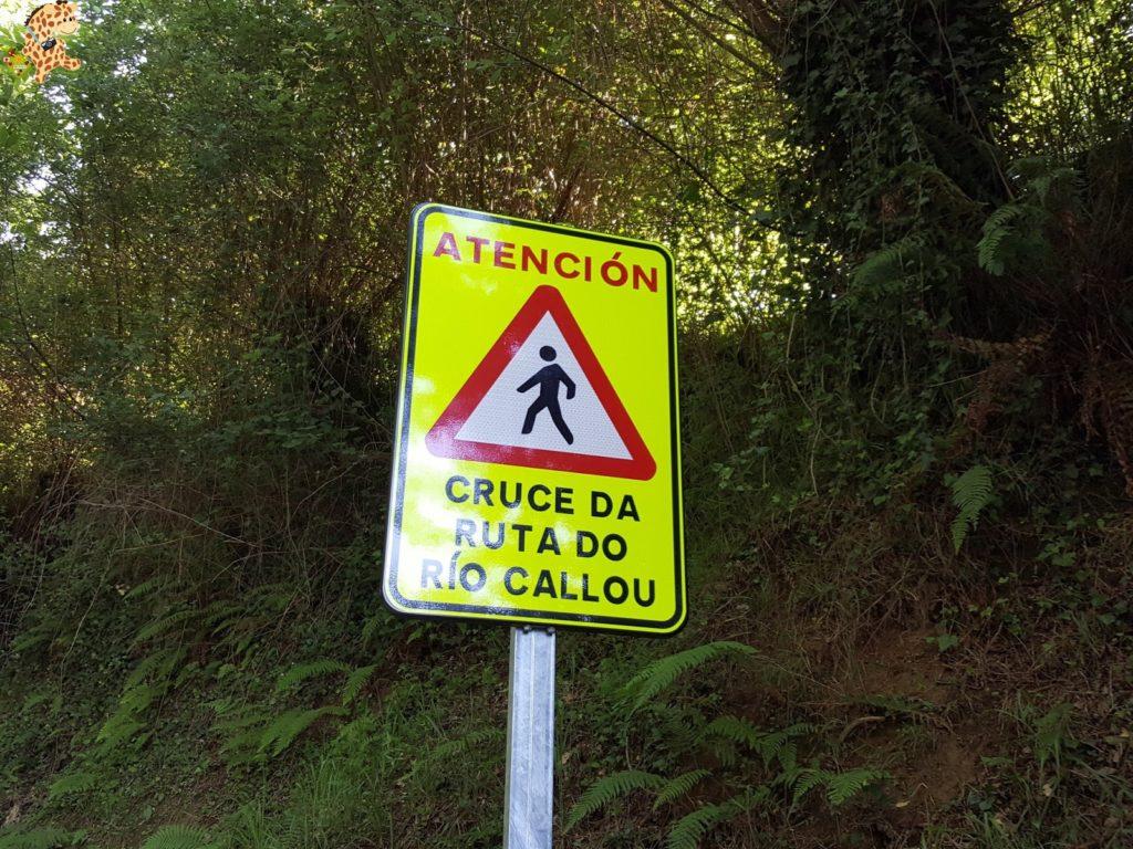 rutadoregocallou senderismoBergondo281829 1024x768 - Ruta do Rego Callou - senderismo en Bergondo (A Coruña)
