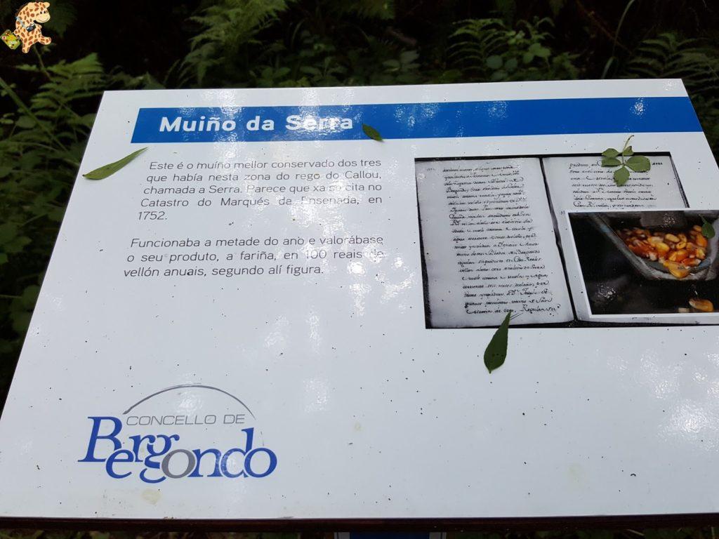rutadoregocallou senderismoBergondo28629 1024x768 - Ruta do Rego Callou - senderismo en Bergondo (A Coruña)