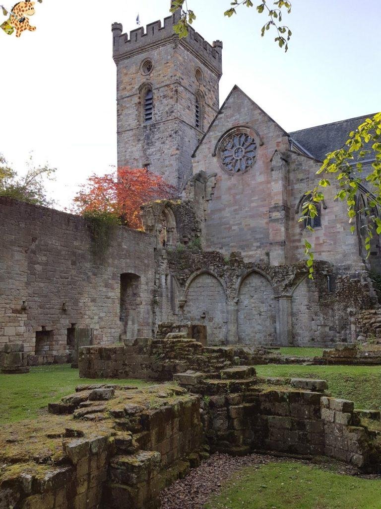 excursionesdesdeGlasgow excursionesdesdeEdimburgo284129 768x1024 - Excursiones desde Glasgow y Edimburgo