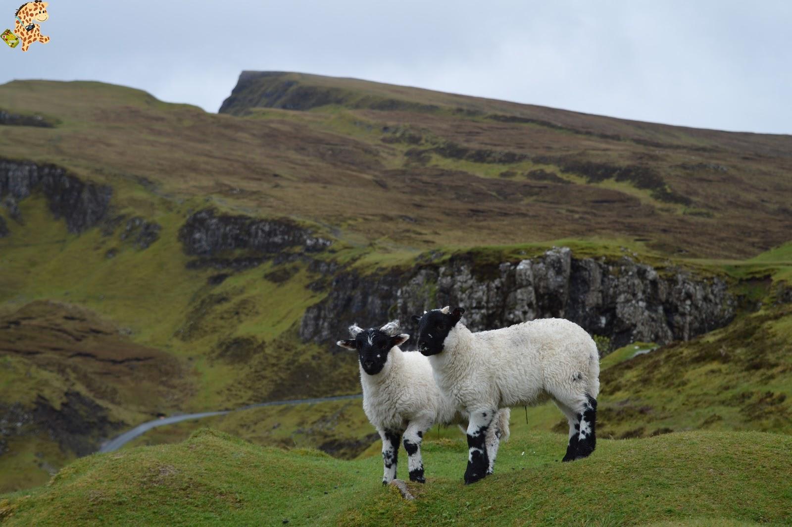 Isla de Skye en 2 días