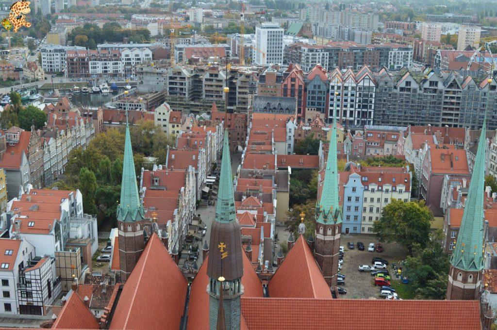 poloniaen1semana281629 1024x681 - Polonia en 1 semana: itinerario y presupuesto
